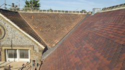 Proctor Roofing Case Studies