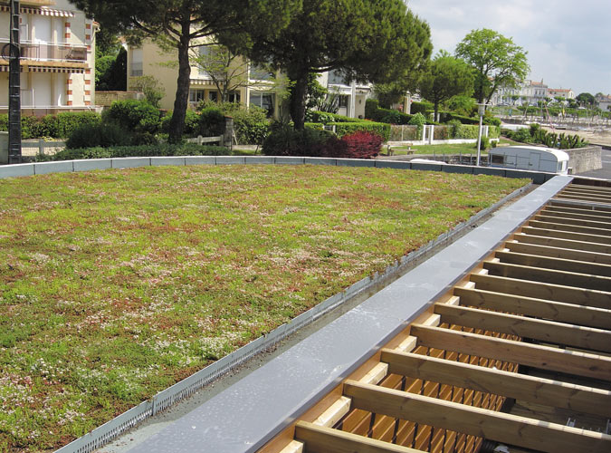 Green Roofing Proctor Roofing Norfolk Roofing Company