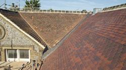 Proctor Roofing Case Studies